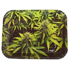 Wet Industry Disposable 6pk Rolling Trays - Flower Room
