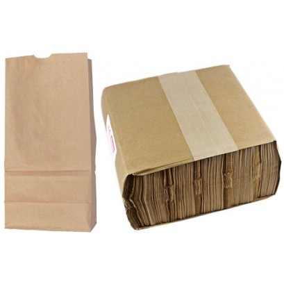 Brown Paper Grocery Bags #4